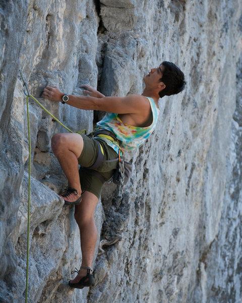 Rock Climbing Photo: Nick on Gold Rush.