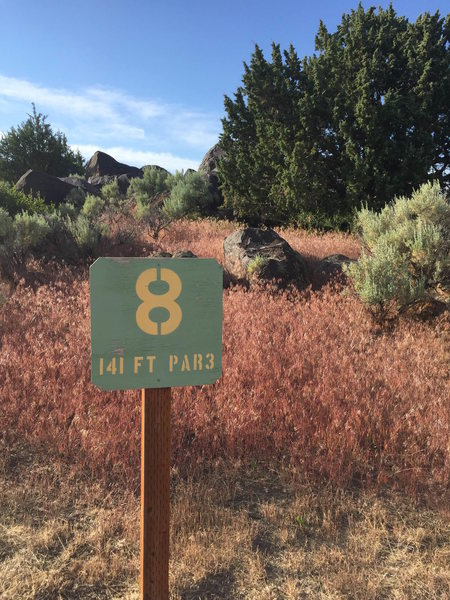 Find Hole 8 on the West side of Welcome Center, Head up and right to find Prognosis Boulder