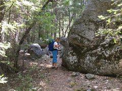 Rock Climbing Photo: Walk through the center of the boulder field.