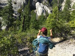 Rock Climbing Photo: Look for these two dead trees for where the trail ...