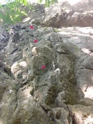 Rock Climbing Photo: This is the second bolt line from the left. First ...
