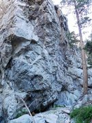 Rock Climbing Photo: The London Wall, Williamson Rock