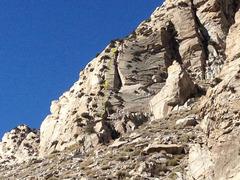 Rock Climbing Photo: Day Glo