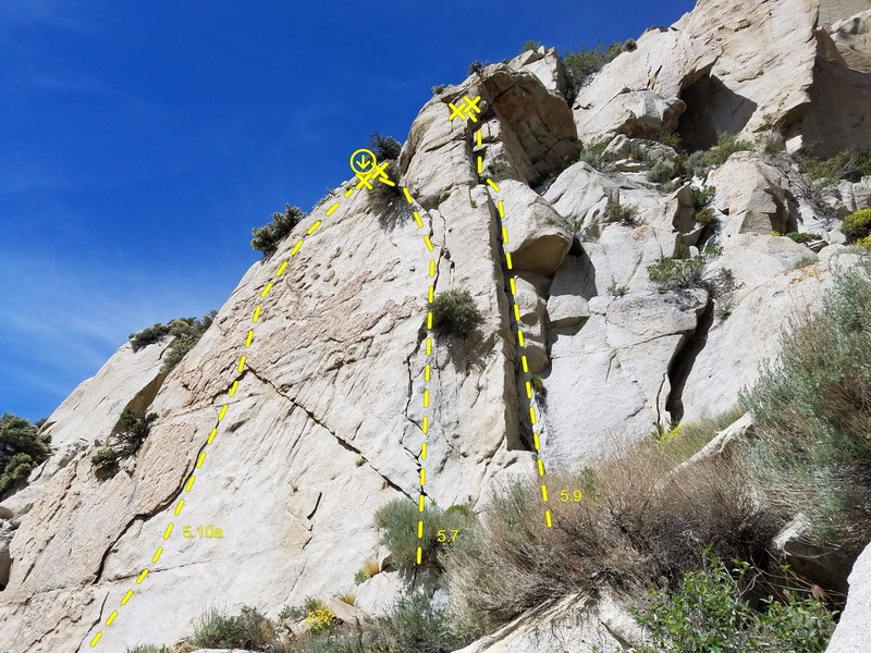 Showing Cool Hand Luke, No-Width, and Pine Climb from left to right
