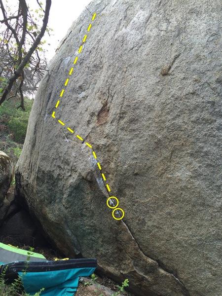 Pangolin, start at yellow circles