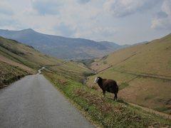 Rock Climbing Photo: Newland's Pass