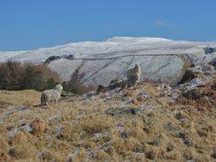 Rock Climbing Photo: On the Fell above Watendlath Tarn