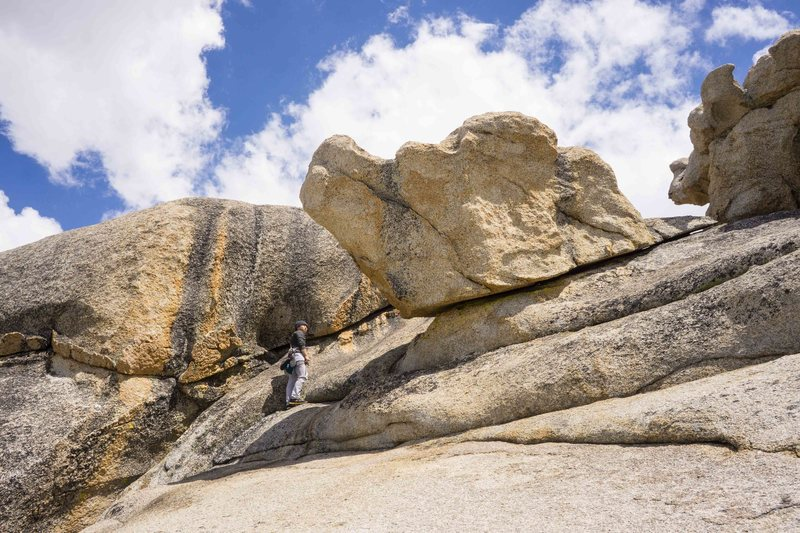 Rock Climbing Photo: long lost siblings in the sierra
