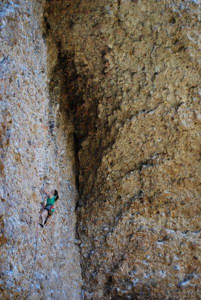 Tiff Climbs Dry Times