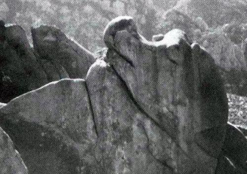 Rock Climbing Photo: Elsie the Cow