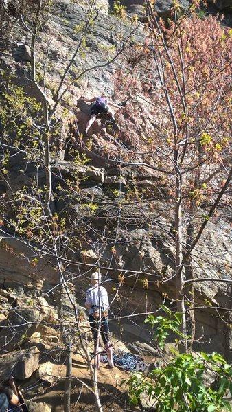 Rock Climbing Photo: Leading in Clear Creek