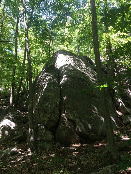 Rock Climbing Photo: Tiny Pants