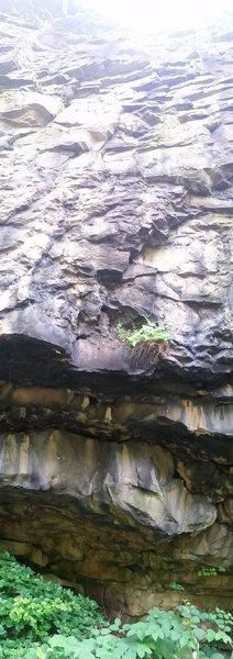 Rock Climbing Photo: Rodger 6