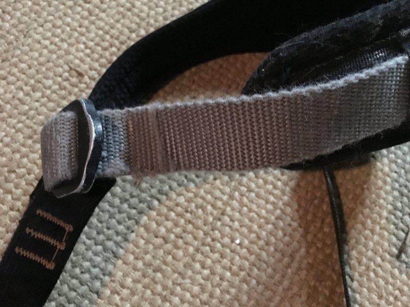 Harness 5