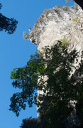 Rock Climbing Photo: Sic Nabo on the wild finish to Babble-On