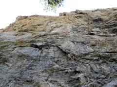 Rock Climbing Photo: London Wall, Williamson Rock
