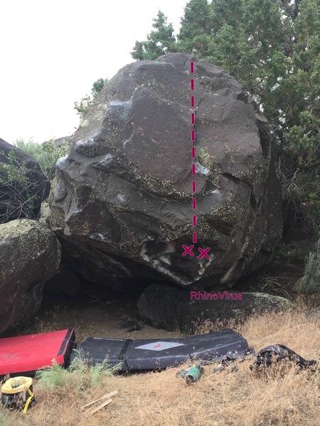 Rock Climbing Photo: Rhinovirus