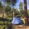 Dispersed free camping.