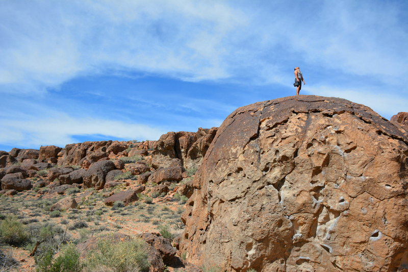 Perspective of the size of the Serengeti Boulder - http://www.timetoclimb.com/bouldering/climbing-in-bishop-the-happy-boulders