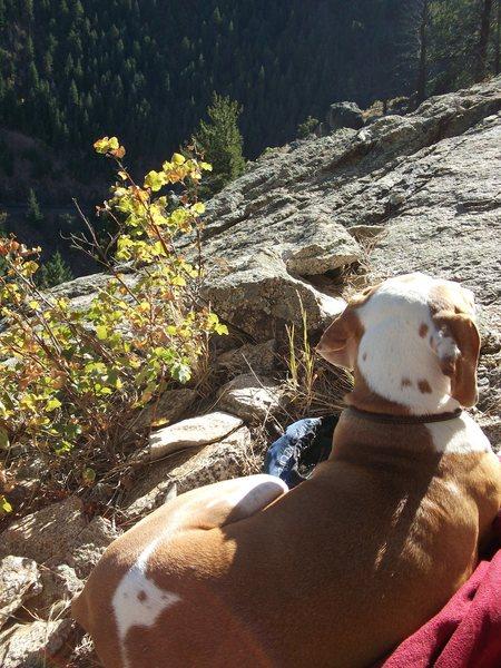 Rock Climbing Photo: She was my sidekick for so many years.