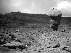 Rock Climbing Photo: Happy Turk