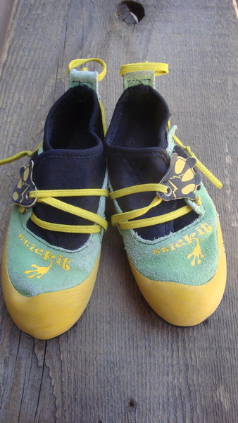 Rock climbing shoes for the little one.