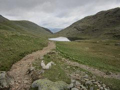 Rock Climbing Photo: Mountain Tarn .. Styhead Pass