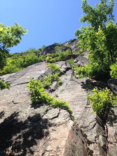 Rock Climbing Photo: View from the base.