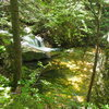 Scenic Cascade and Pool about 10-15 min. up the trail to Table Mt