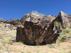 Rock Climbing Photo: Main face of the Phoenix Sharon Boulder.
