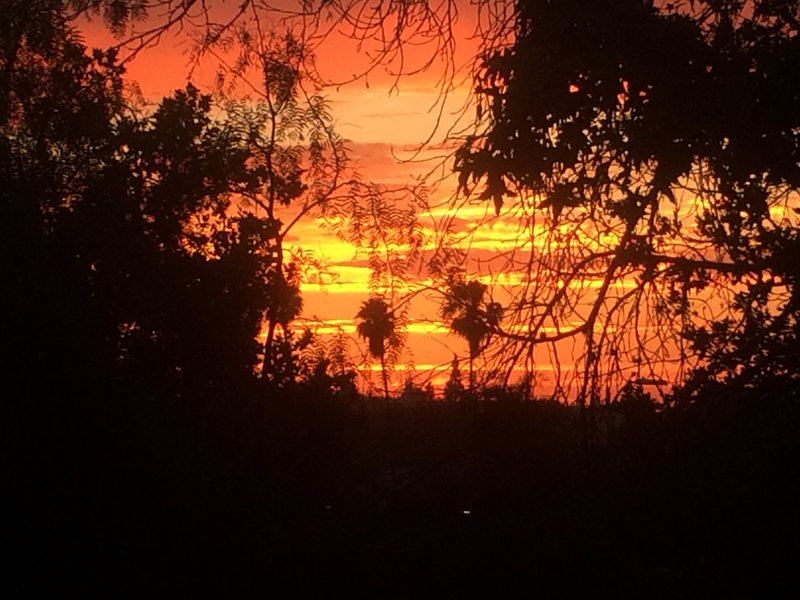 Tropical So Cal Fire in the Sky!!!