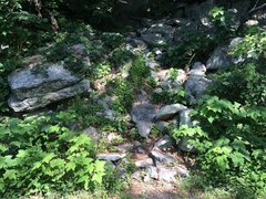 Rock Climbing Photo: Sixish trailhead.  The next trail is Strickley&#39...