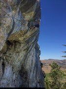 Rock Climbing Photo: Cali lime