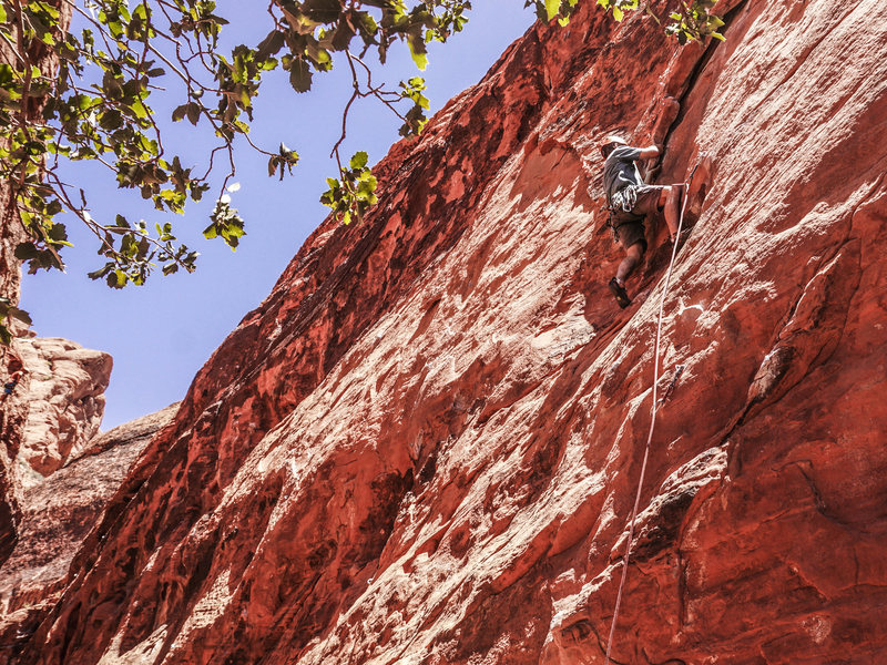 Rock Climbing Photo: Jonny on Burros Might Fly. 6/14/16.