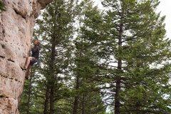 Rock Climbing Photo: Ken Hilton on the Mini Blonde Bomb
