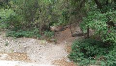 Rock Climbing Photo: This is the trailhead on the right side of the roa...
