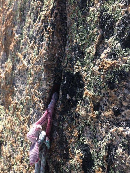 Rock Climbing Photo: RURP.