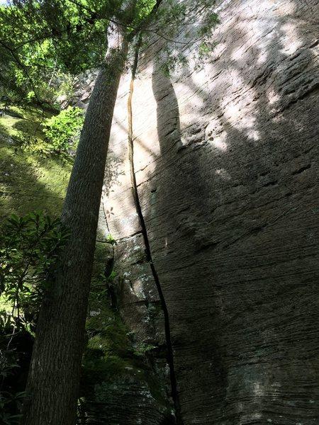 Rock Climbing Photo: Wide Pride!
