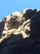 Rock Climbing Photo: Splitter @ top!