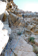 Rock Climbing Photo: Willy making short work of pitch 3, the chossiest ...