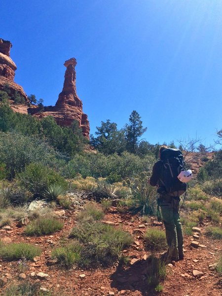 Steve looking southeast at Kachina Woman while returning from a jaunt down Boynton Canyon.