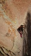 Rock Climbing Photo: It's not this steep? Solo lap.