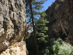 Rock Climbing Photo: After getting through the bouldery crux on the Bar...