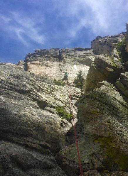 Rock Climbing Photo: Darwin Crack!!