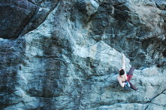 Rock Climbing Photo: Ian on Ginseng Route