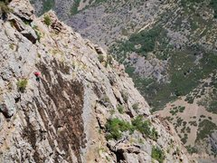 Rock Climbing Photo: A climber earlier today adrift in a sea of moss on...