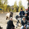 """trained"" Grizzly bear shoot ..."