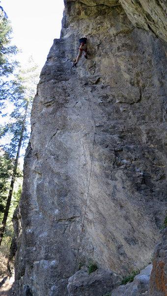 Rock Climbing Photo: Truman nearing the top.