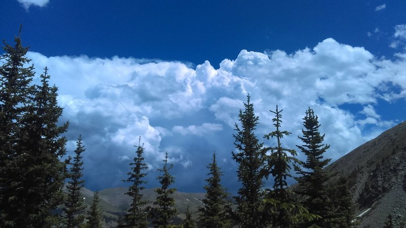 Those afternoon thunderheads right on schedule.