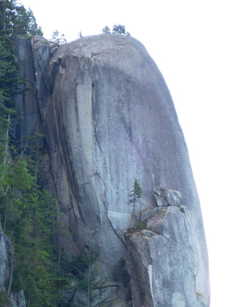 Rock Climbing Photo: view from Seasoned in the Sun.